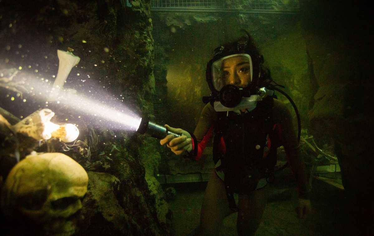 絕鯊47猛鯊出籠 劇照