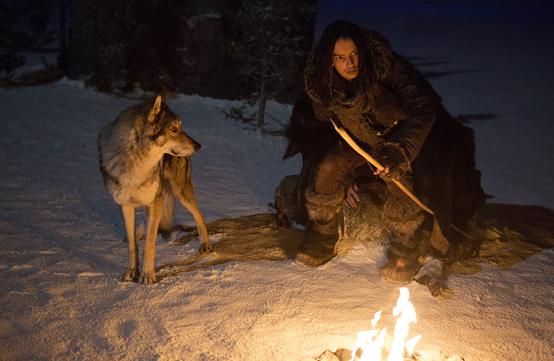 【無雷影評】《極地之王》現今狗狗電影的老祖宗